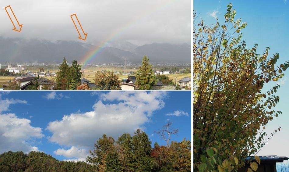 今朝の虹は_a0212730_18220682.jpg