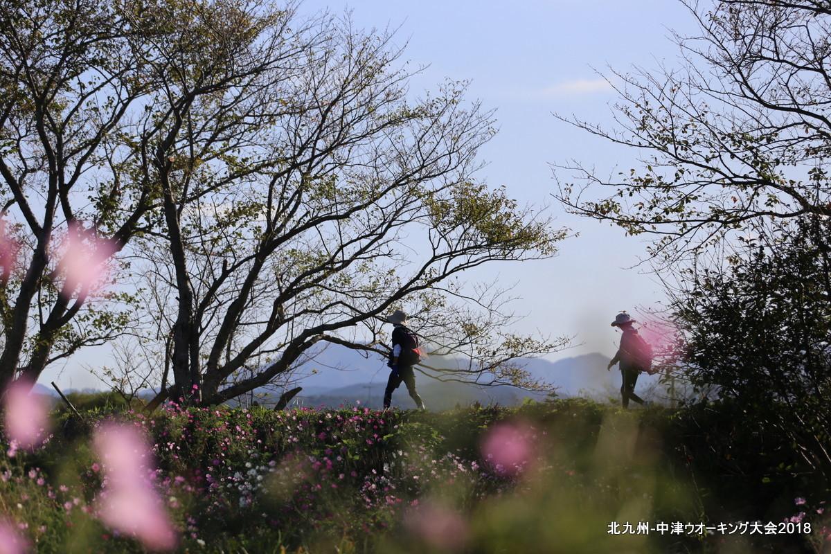 北九州ー中津ウオーキング大会2018_d0389843_11263443.jpg