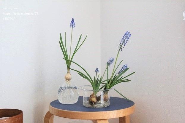 水栽培の準備とお気に入りの花器_e0214646_22441470.jpg