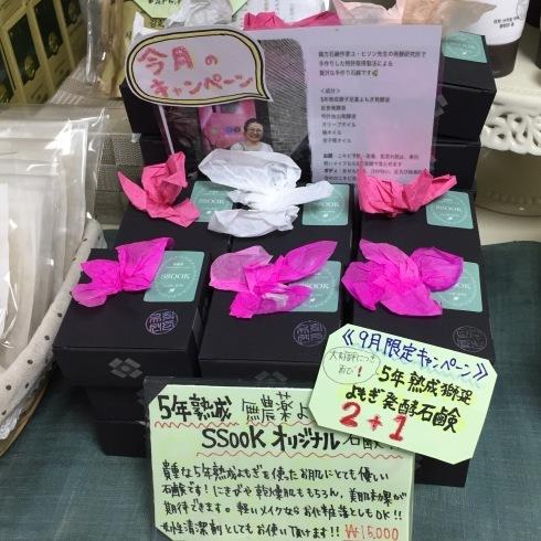 ソウル旅行 11 素晴らしきヨモギ石鹸に出会う@明洞「SSOOK(スック)」_f0054260_12463250.jpg
