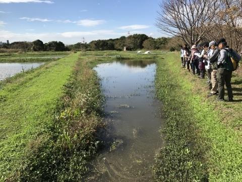 スマホから初投稿!関東水と緑のネットワーク交流会参加_c0014967_10344035.jpg