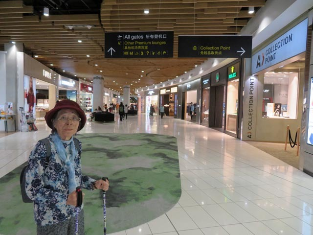 24日NZ出発〜25日日本到着_e0133780_21381261.jpg