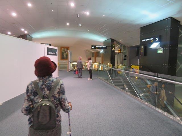 24日NZ出発〜25日日本到着_e0133780_21531635.jpg