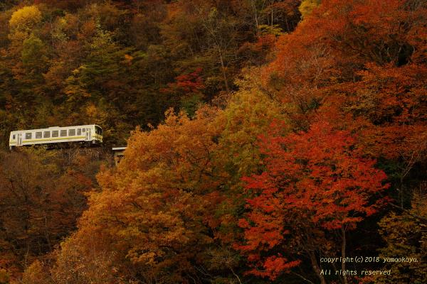 紅葉の峠道を_d0309612_21050029.jpg