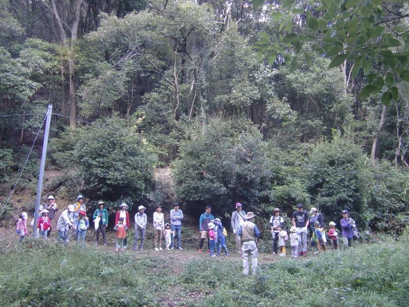 きのくに子どもNPO「秋の里山で遊ぼう!ハイキング!」・・・孝子の森_c0108460_19245313.jpg