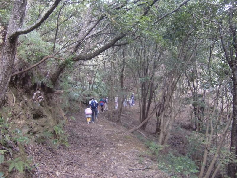 きのくに子どもNPO「秋の里山で遊ぼう!ハイキング!」・・・孝子の森_c0108460_19272780.jpg