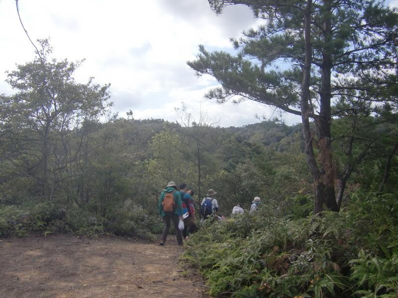 きのくに子どもNPO「秋の里山で遊ぼう!ハイキング!」・・・孝子の森_c0108460_19280101.jpg