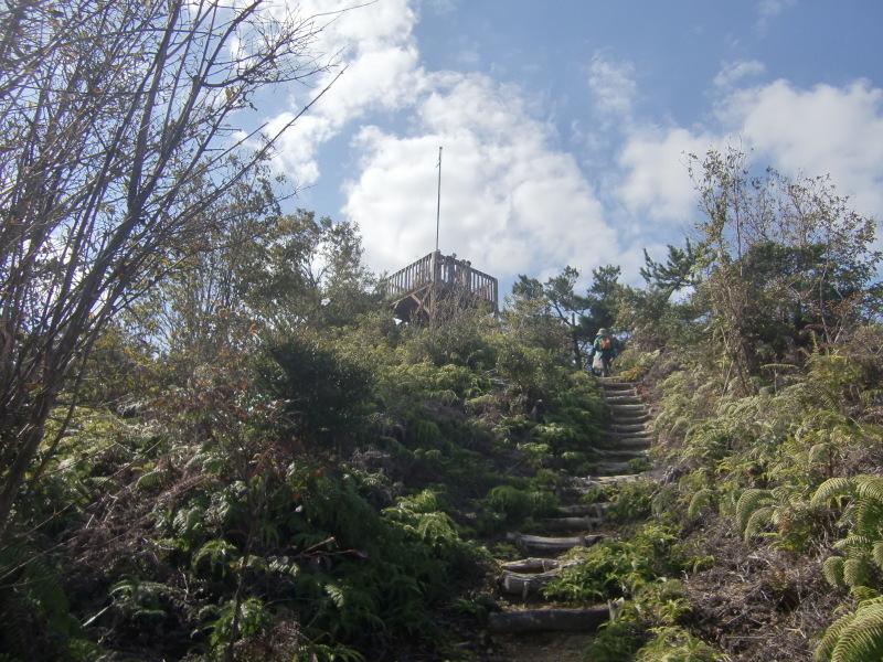 きのくに子どもNPO「秋の里山で遊ぼう!ハイキング!」・・・孝子の森_c0108460_19280219.jpg