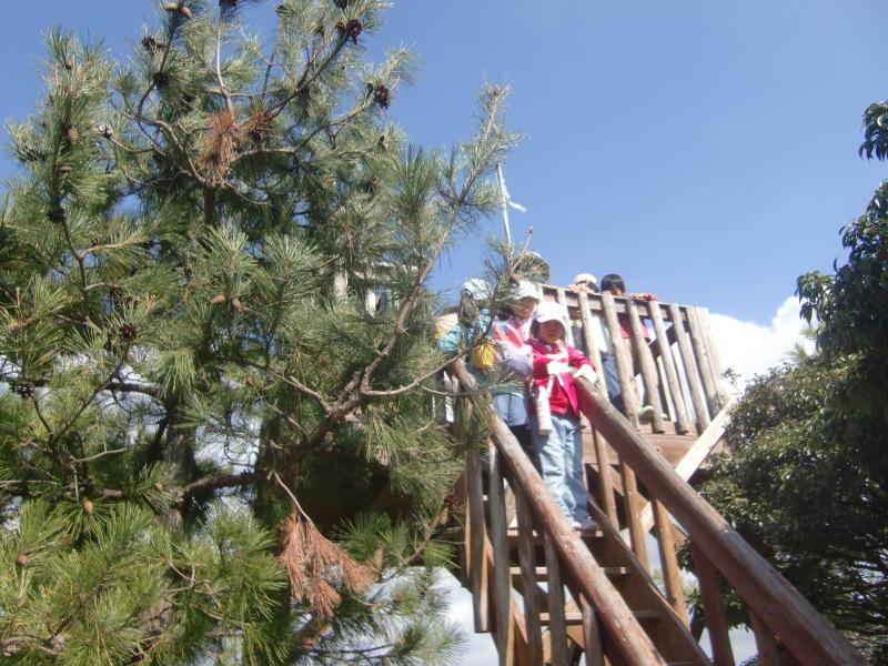 きのくに子どもNPO「秋の里山で遊ぼう!ハイキング!」・・・孝子の森_c0108460_19285633.jpg