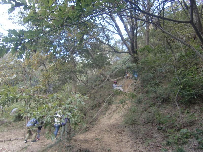 きのくに子どもNPO「秋の里山で遊ぼう!ハイキング!」・・・孝子の森_c0108460_19354423.jpg