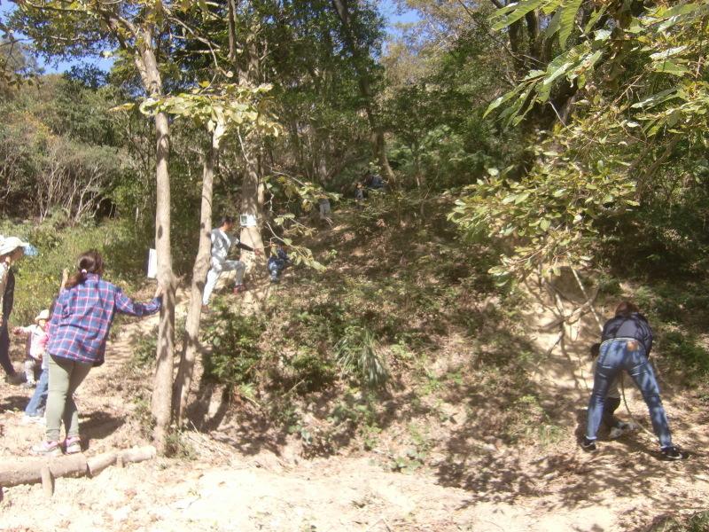 きのくに子どもNPO「秋の里山で遊ぼう!ハイキング!」・・・孝子の森_c0108460_19354595.jpg