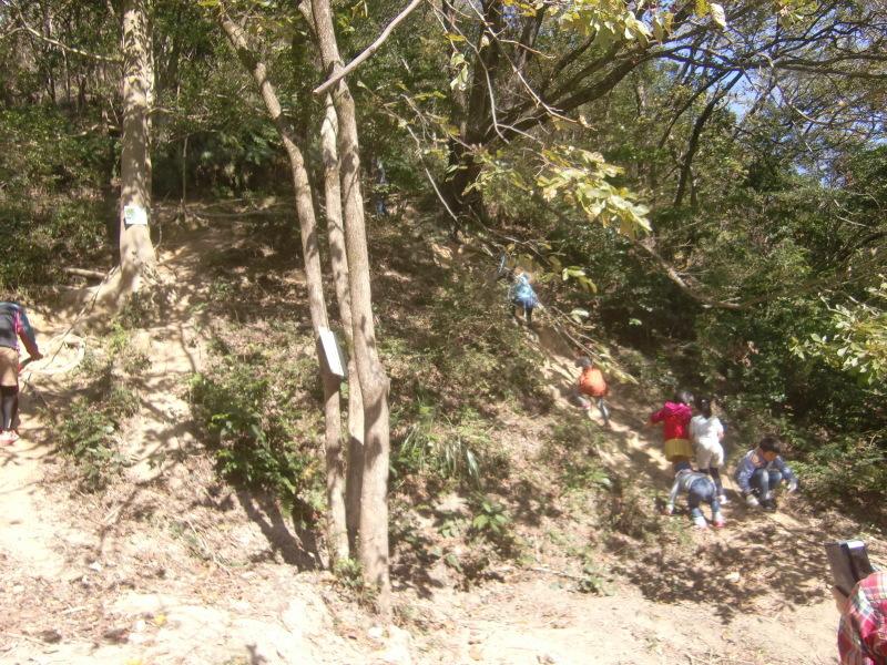 きのくに子どもNPO「秋の里山で遊ぼう!ハイキング!」・・・孝子の森_c0108460_19354697.jpg