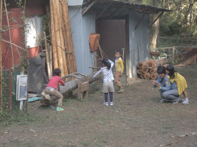 きのくに子どもNPO「秋の里山で遊ぼう!ハイキング!」・・・孝子の森_c0108460_19363825.jpg