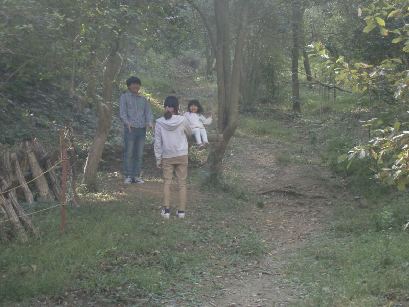 きのくに子どもNPO「秋の里山で遊ぼう!ハイキング!」・・・孝子の森_c0108460_19363959.jpg