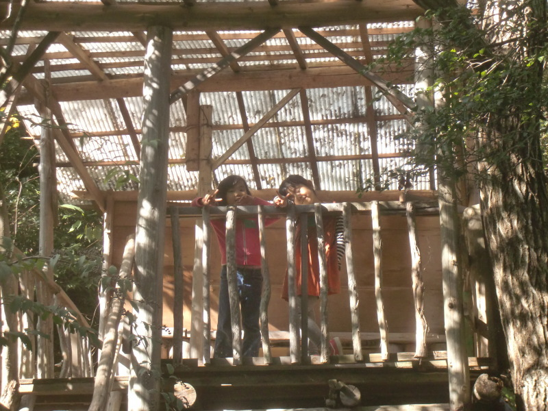 きのくに子どもNPO「秋の里山で遊ぼう!ハイキング!」・・・孝子の森_c0108460_19381990.jpg