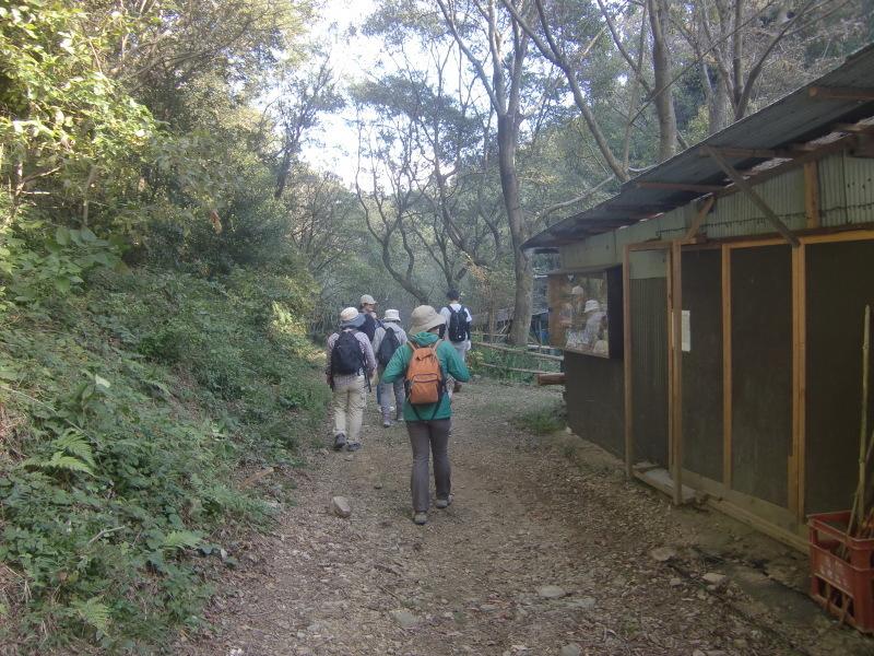 きのくに子どもNPO「秋の里山で遊ぼう!ハイキング!」・・・孝子の森_c0108460_19392473.jpg