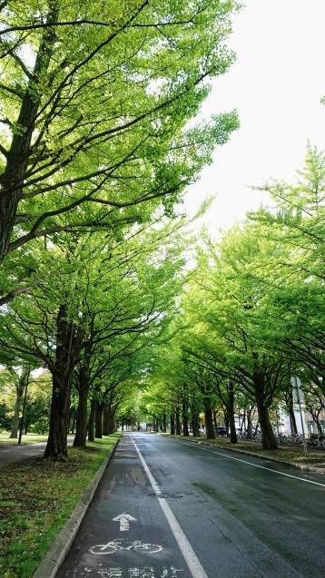 北海道最終日_e0167593_23511461.jpg