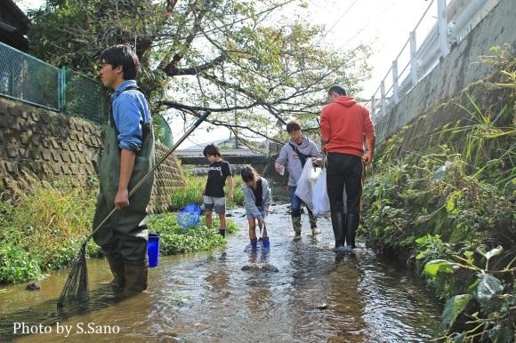 侍従川のクリーンアップ&調査(2018年10月)_b0348205_00000724.jpg