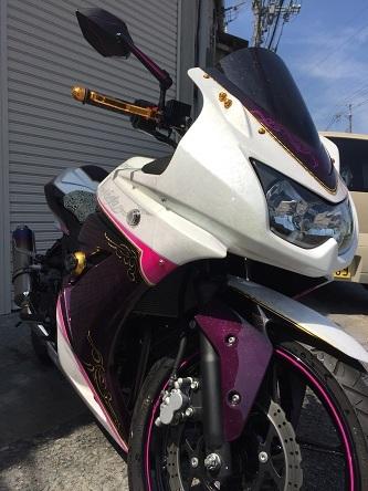 kawasaki ninja 250R 全塗装_a0131521_18430299.jpg
