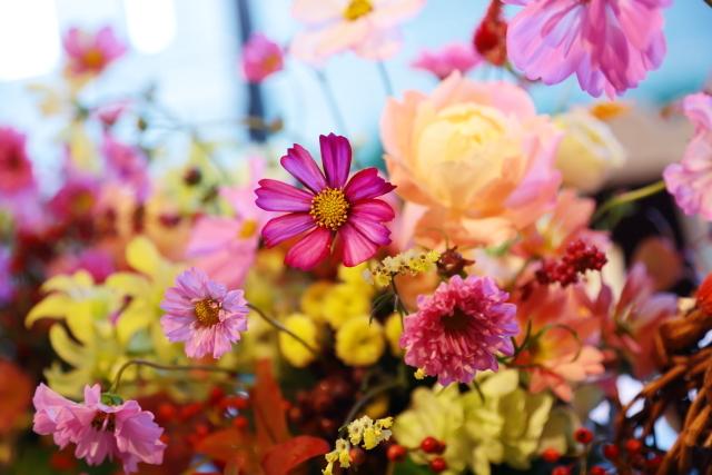 秋の装花 10月、如水会館様へ コスモスと秋の実のバスケットの卓上装花_a0042928_19334487.jpg
