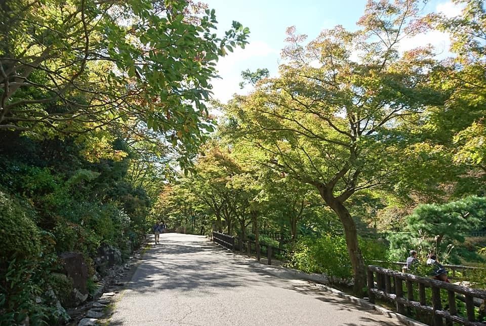 東山動植物園を散策♪_f0373339_14185070.jpg