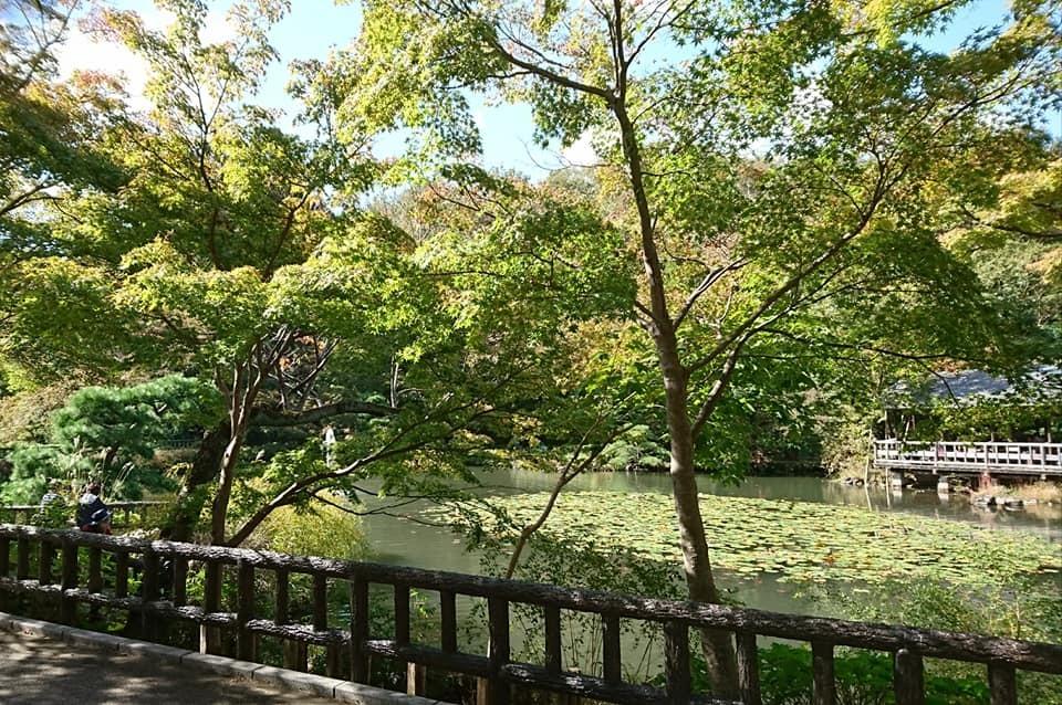 東山動植物園を散策♪_f0373339_14185092.jpg