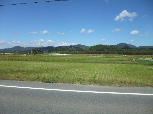 丹波篠山黒豆ライド_d0174462_18461581.jpg