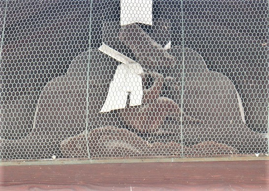 京の表鬼門と裏鬼門_b0044663_22592421.jpg