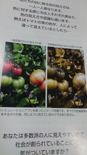 カラーバリアフリー_f0256164_14364339.jpg