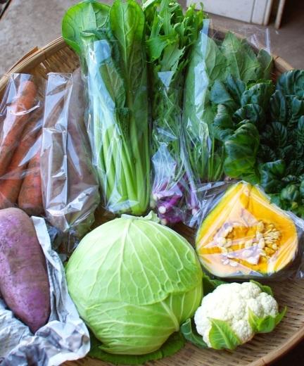 今週の野菜セット(10/30~11/3着)_c0110869_12093236.jpg