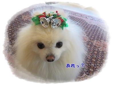 b0167519_20114741.jpg