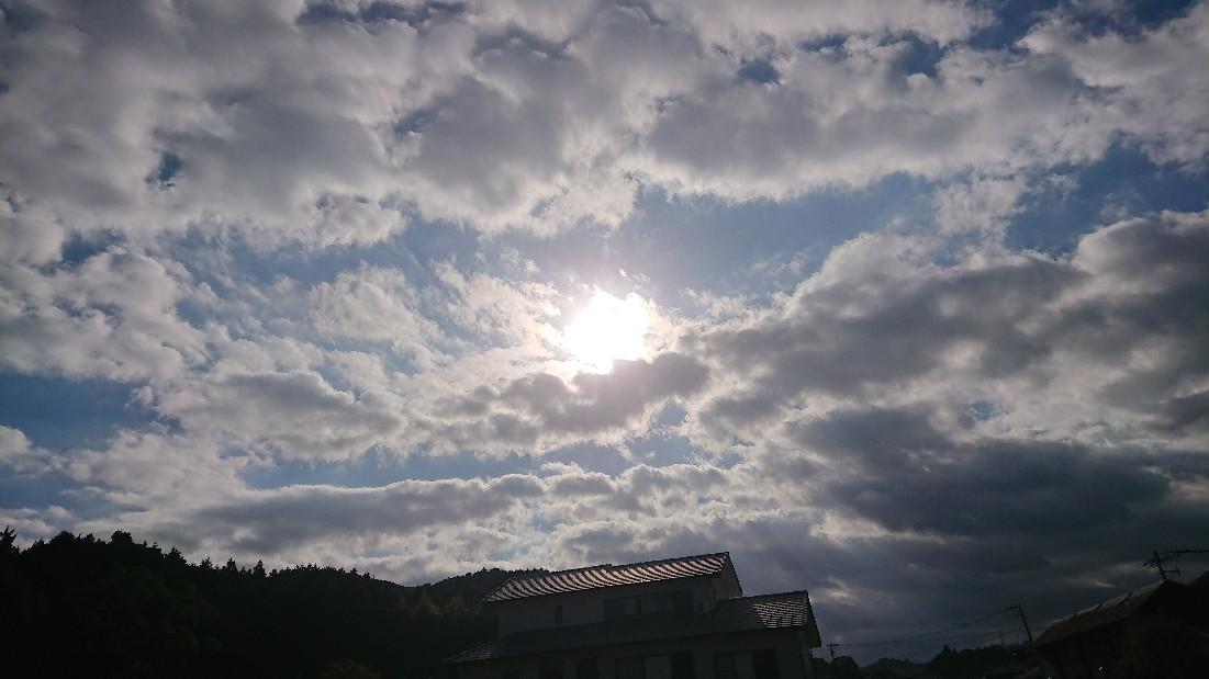 朝の神社参拝ランは佳..._b0098228_09280541.jpg