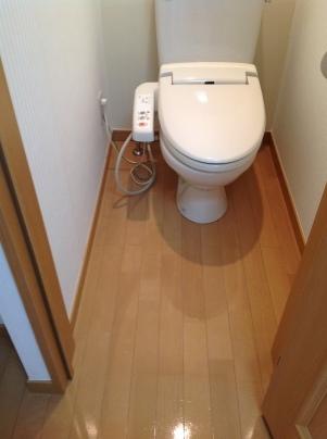 千代田町B202号室クリーニング_c0186441_18001178.jpg