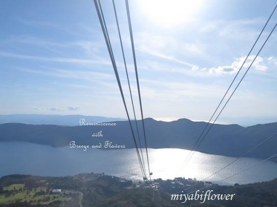 箱根 駒ヶ岳山頂から見る雪化粧の富士山_b0255144_22562074.jpg