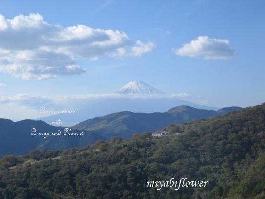 箱根 駒ヶ岳山頂から見る雪化粧の富士山_b0255144_22563074.jpg