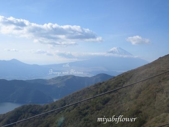 箱根 駒ヶ岳山頂から見る雪化粧の富士山_b0255144_22564712.jpg