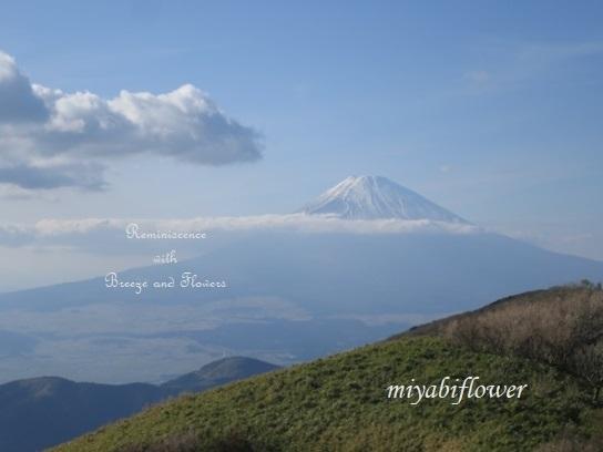 箱根 駒ヶ岳山頂から見る雪化粧の富士山_b0255144_22570171.jpg