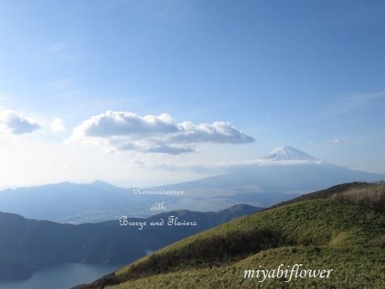 箱根 駒ヶ岳山頂から見る雪化粧の富士山_b0255144_22572120.jpg