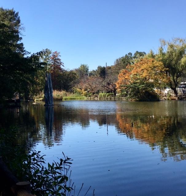 Fine autumn day  サージュとピクニック♪_a0165160_16382651.jpg
