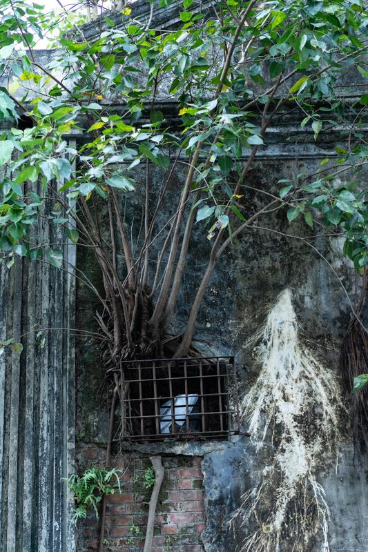 2018/10/31 ミャンマー:その1 ヤンゴンで_b0171364_23134072.jpg