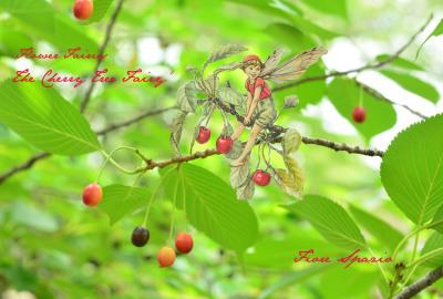 第4回 妖精たちのティーパーティ 「植物を描く」_a0252678_07270164.jpg