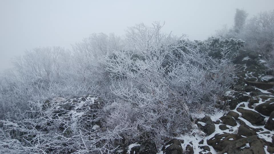八ヶ岳リトリートハウスFlanのキセキ_e0231387_21480243.jpg