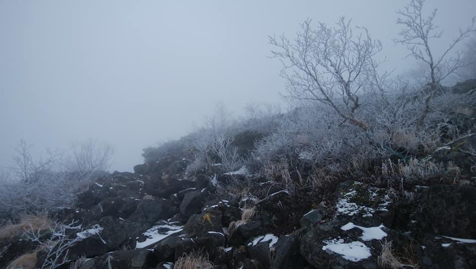 八ヶ岳リトリートハウスFlanのキセキ_e0231387_21480453.jpg