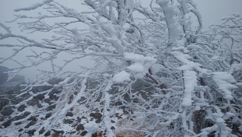 八ヶ岳リトリートハウスFlanのキセキ_e0231387_21480499.jpg