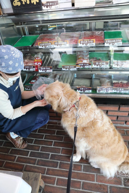 秋のお肉屋さん_b0275998_22465900.jpg