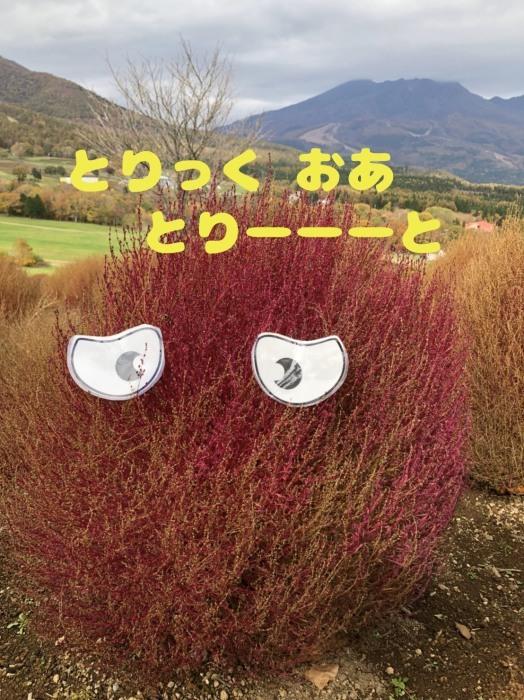 b0067012_15595873.jpg