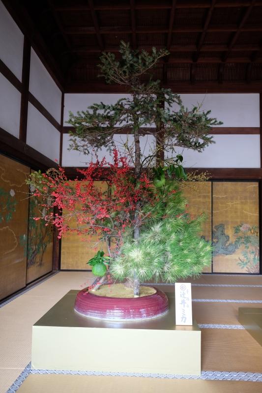 神戸から帰って来てから今まで。_f0045630_07350093.jpg