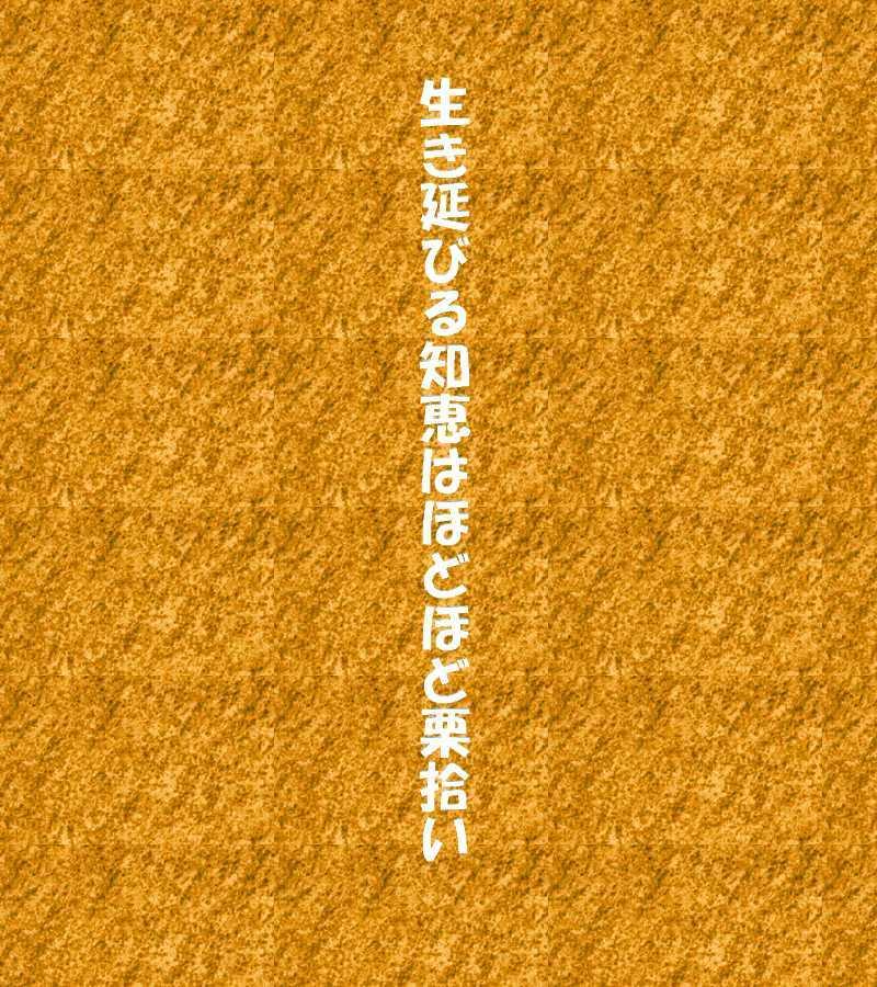 f0117041_05002227.jpg