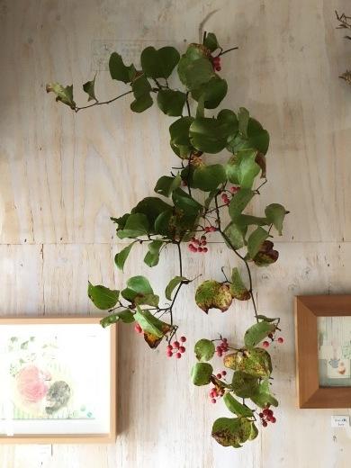 赤い実で秋を楽しむ_c0334574_19114468.jpg