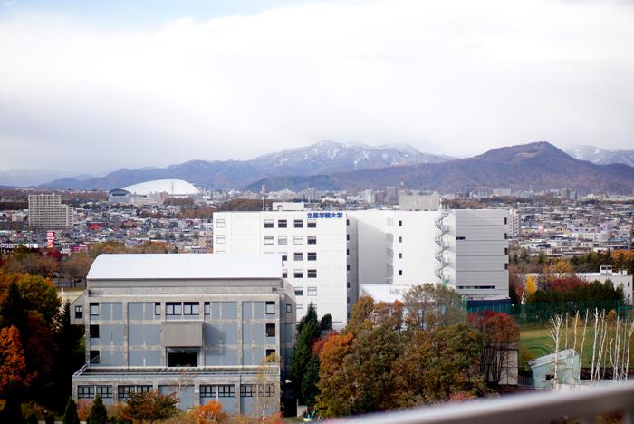 砥石山の山ひだに2018年の初雪_c0182775_10221413.jpg